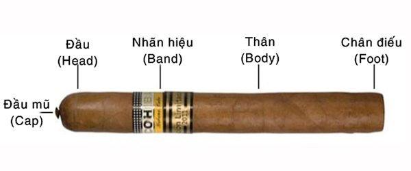 cấu trúc điếu xì gà