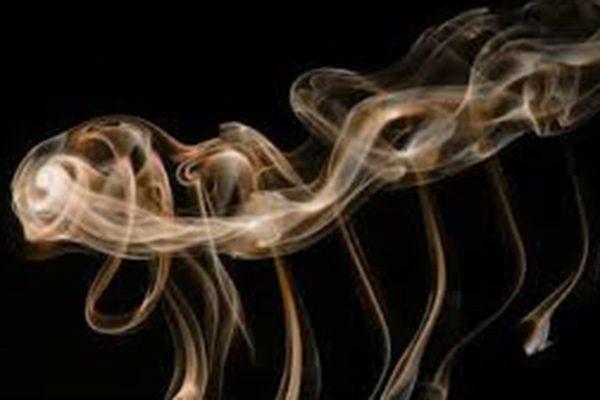 thưởng thức xì gà