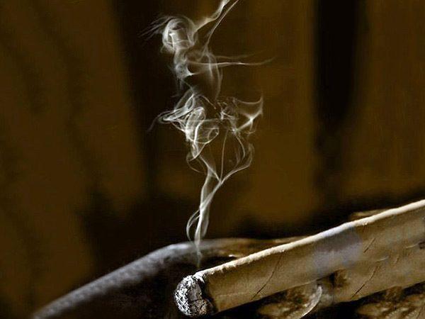 hương vị của xì gà