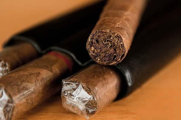 ủ xì gà như thế nào