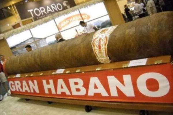 Top 10 điếu cigar đắt đỏ nhất